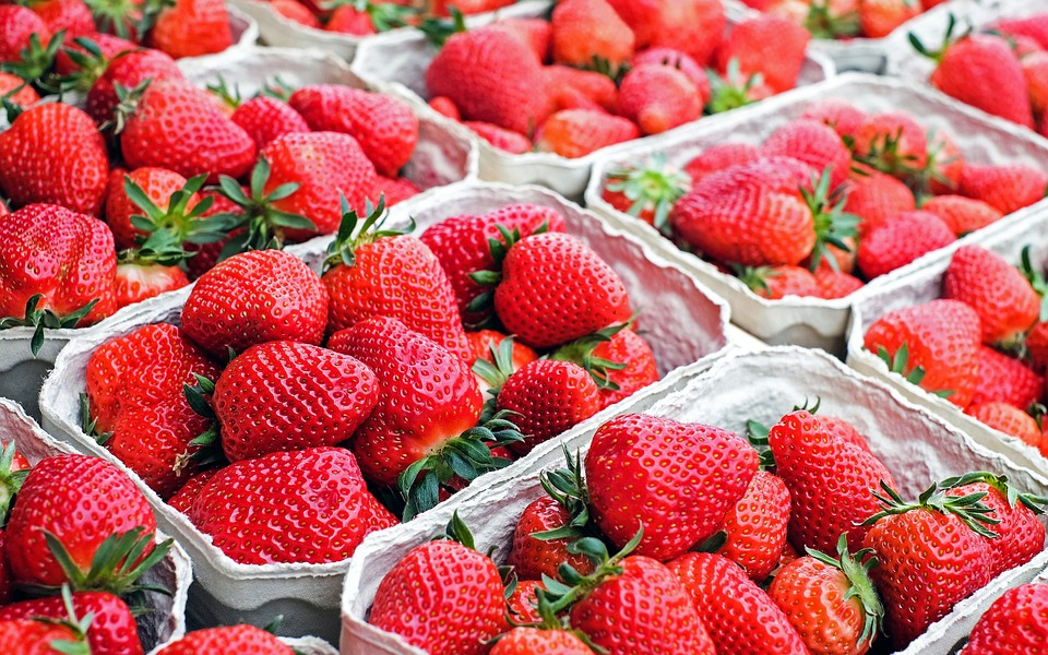 how to know when to pick strawberries